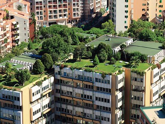 Cubiertas verdes: medio ambiente y sostenibilidad