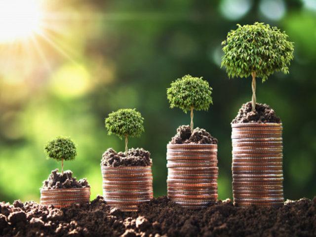 Sostenibilidad y cambio climático