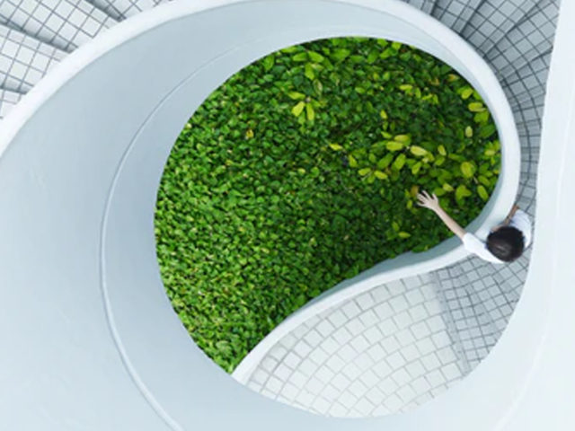 El papel del arquitecto frente al cambio climático