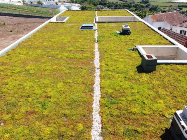 Coberturas verdes e eficiência energética